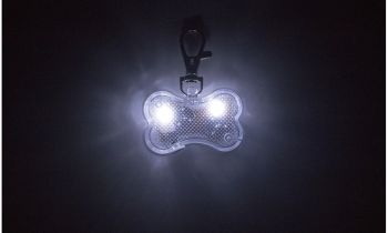 Daily Steals-Water-Resistant LED Dog Collar Light Charm-Pets-Clear-Bone Shape-