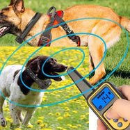 Waterproof Rechargeable Remote Vibration & Shock Dog Training Collar-