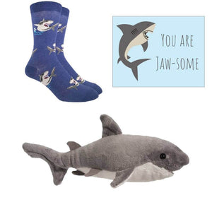 Mini Shark Care Package - Cute Dose