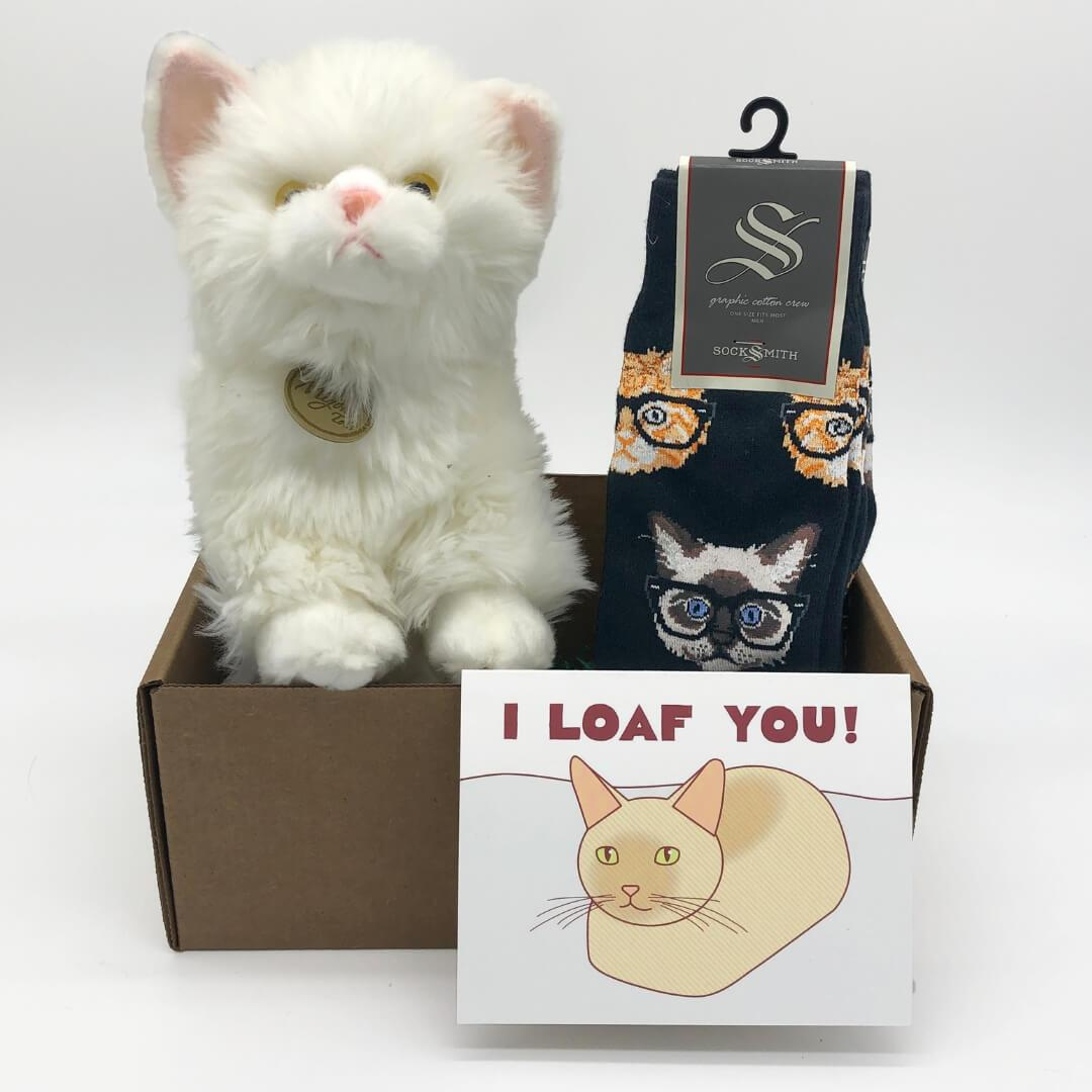 Persian Cat Care Package - Cute Dose