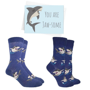 Shark Socks Bundle - Cute Dose