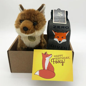Birthday Fox Kit Care Package - Cute Dose