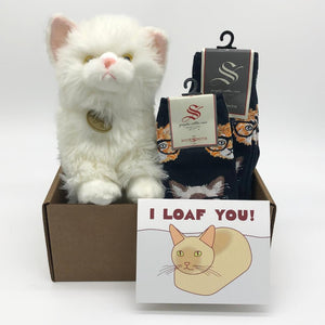 Persian Cat Care Package