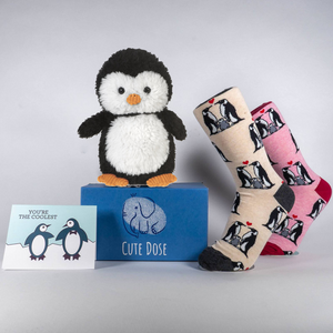 Penguin Care Package - Cute Dose