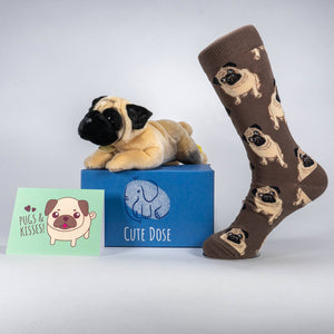 Pugs & Kisses Care Package - Cute Dose