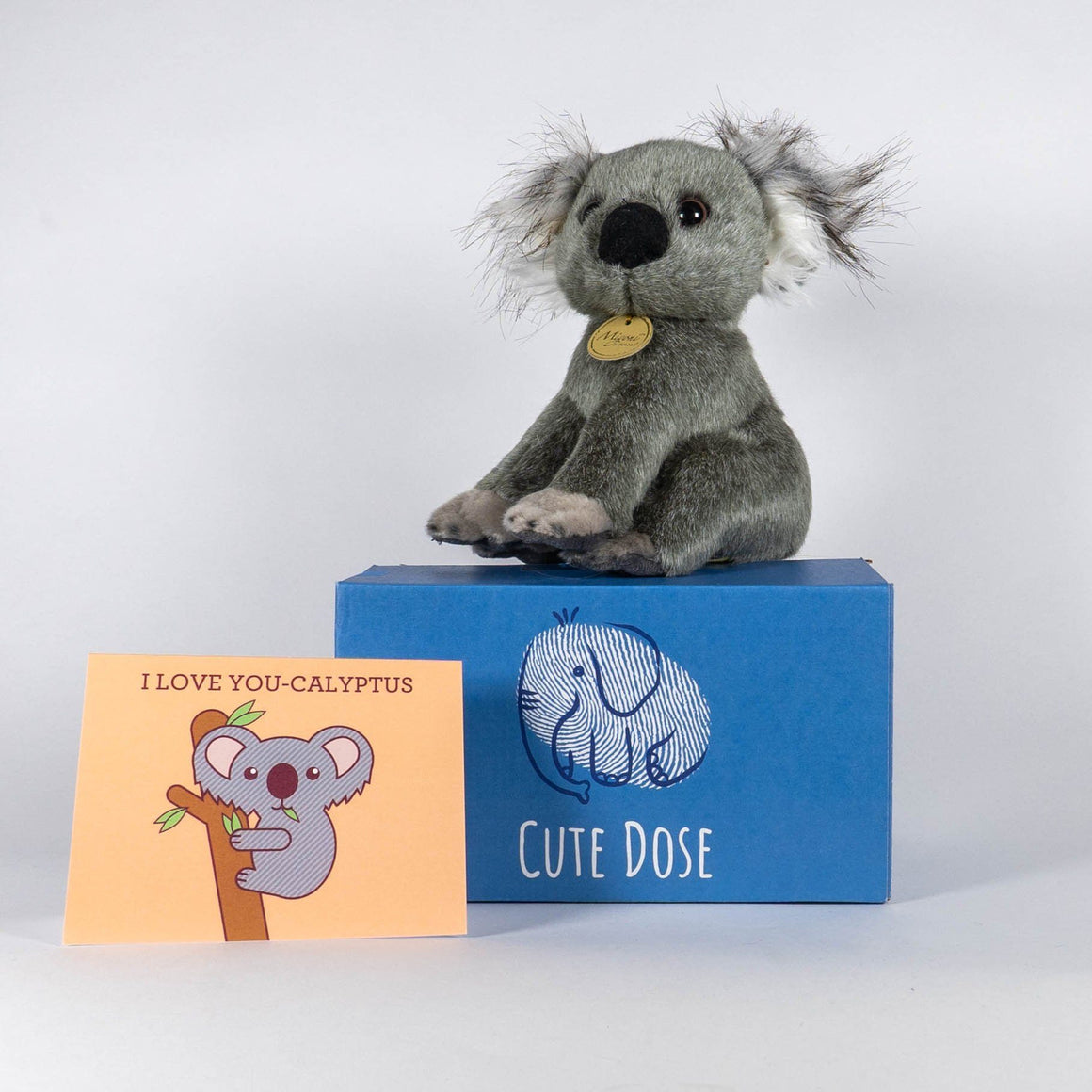 Koala Care Package - Cute Dose