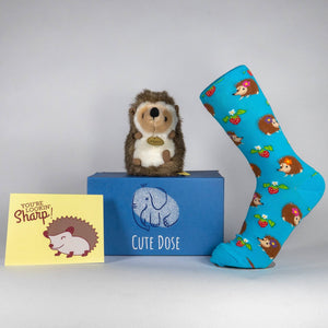 Hedgehog Care Package - Cute Dose