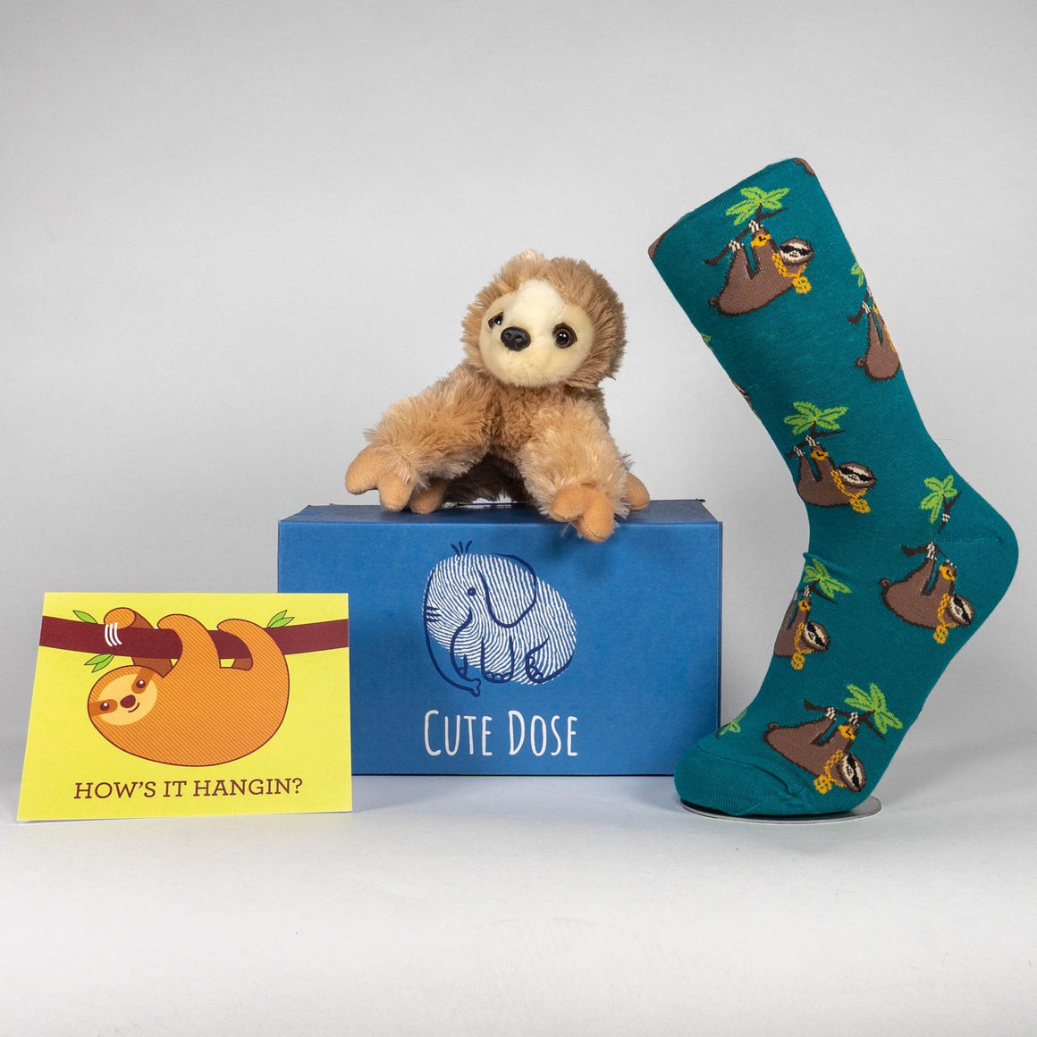 Mini Sloth Care Package - Cute Dose