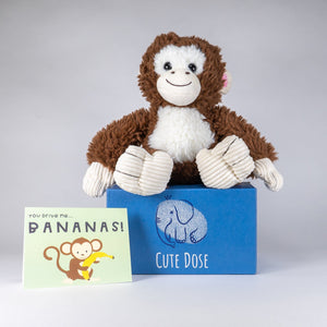 Monkey Care Package - Cute Dose