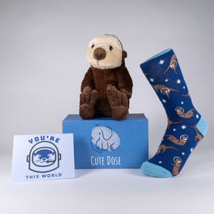 You're Otter This World Package - Cute Dose