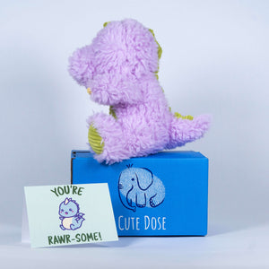Dino Care Package - Cute Dose