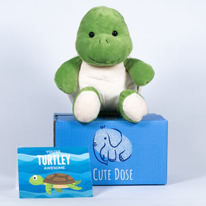 Sea Turtle Package - Cute Dose