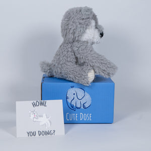 Wolf Care Package - Cute Dose