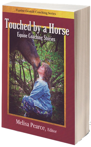 Touched by a Horse Equine Coaching Stories - Volume 1