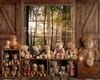 Beary Rustic Forest View Room