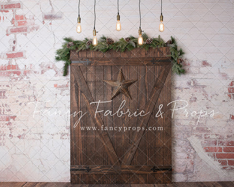 Starry Barn Door