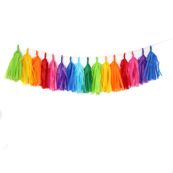 Bright Rainbow Fringe Tassel Garland Kit or Fully Assembled