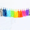 Glitter Sparkles Rainbow Fringe Tassel Garland Kit or Fully Assembled