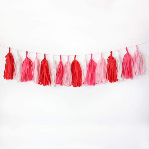 Sweethearts Fringe Tassel Garland Kit