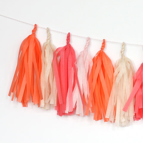 Flamingo Fringe Tissue Tassel Garland Kit