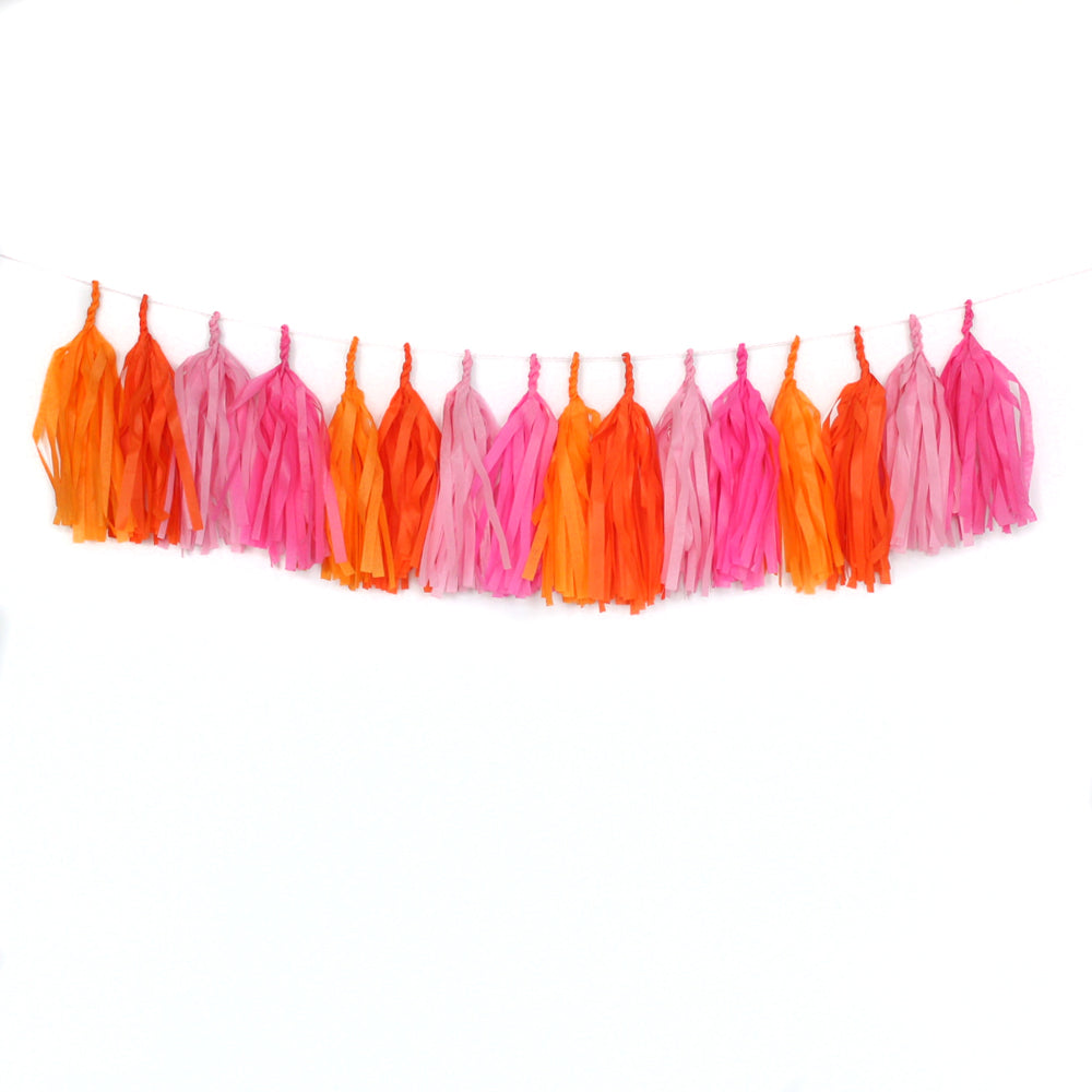 Girls Just Wanna Have Fun Fringe Tissue Tassel Garland Kit or Fully Assembled