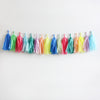 Party Animal Fringe Tassel Garland Kit or Fully Assembled