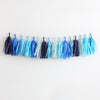 Ocean Fringe Tassel Garland Kit or Fully Assembled