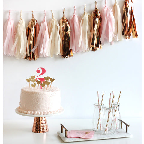 Rose Gold Fringe Tassel Garland Kit
