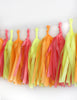 Sherbet Fringe Tassel Garland Kit or Fully Assembled