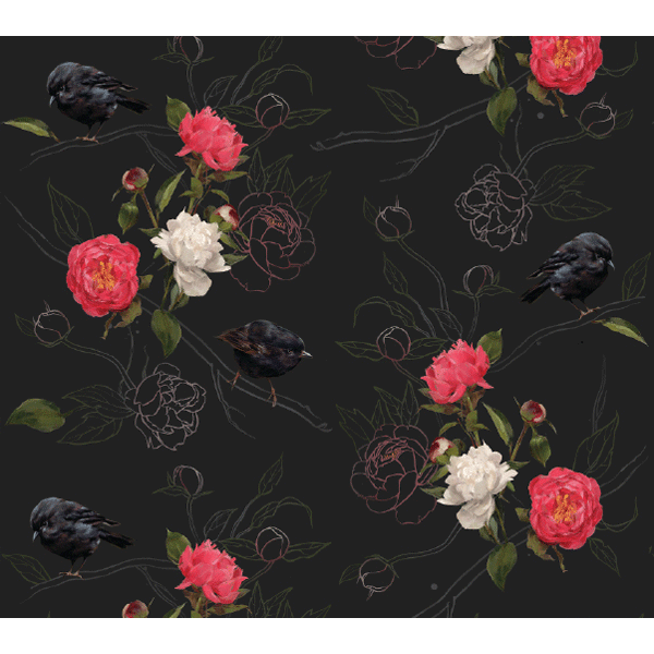Spider Monkey - Monkeys at Midnight - 1 set of 4 Placemats