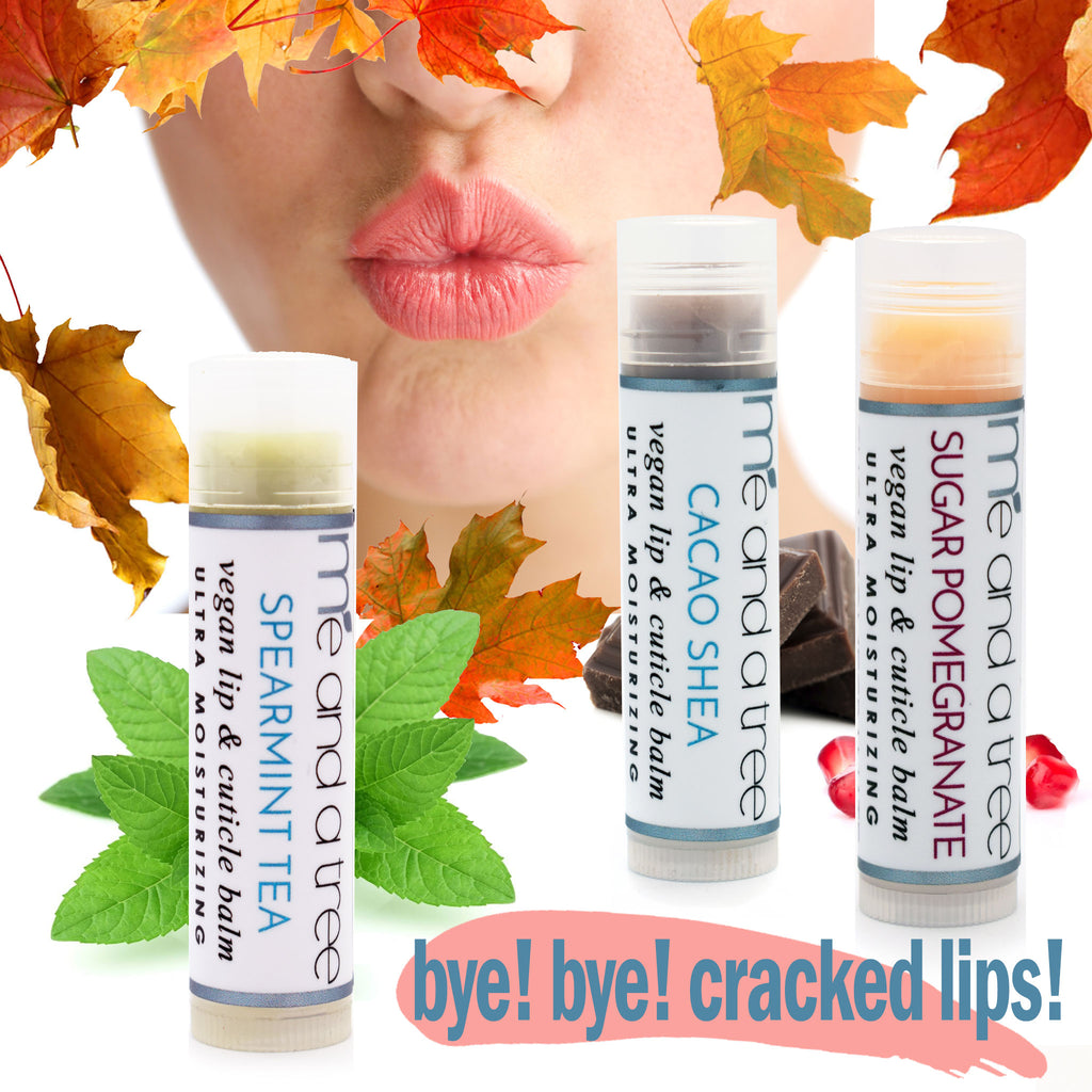Best Natural Healing Lip Balms & Why You Need Them