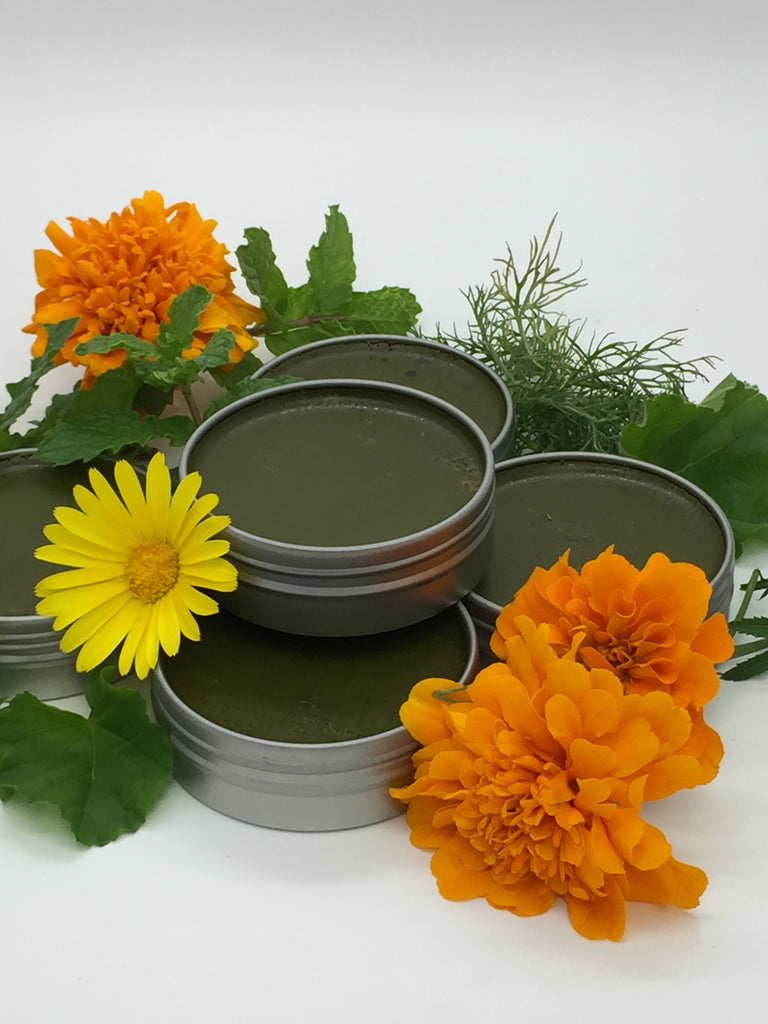 Healing Herbal Skin Salves For Burns Cuts & Bites