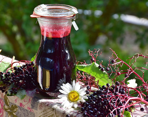 The Beautiful Herbs that Heal Elderberry Syrup Remedy
