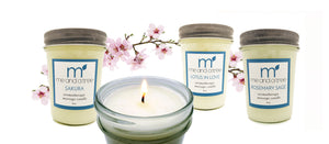 Best Skin Care Products Cruelty Free Natural Organic Plant Based Natural Soy Candles