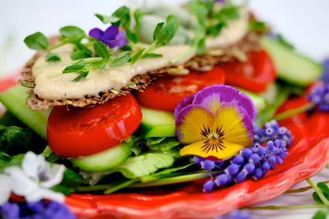 Healthy Raw Foods and Enzymes