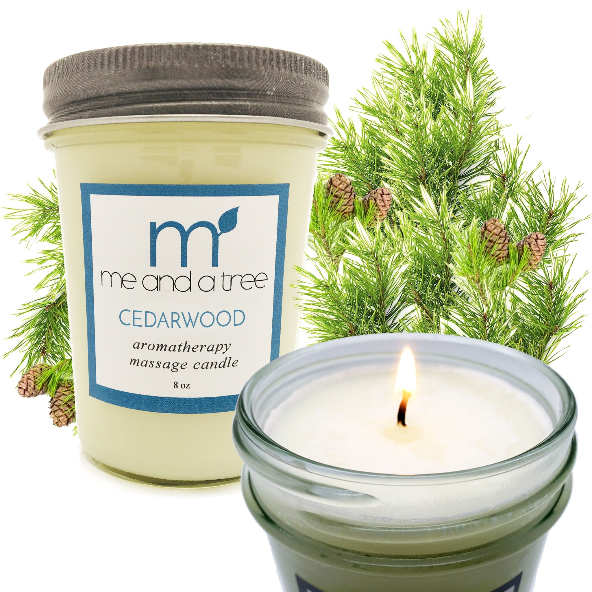 Cedarwood Soy Candle - me and a tree skincare