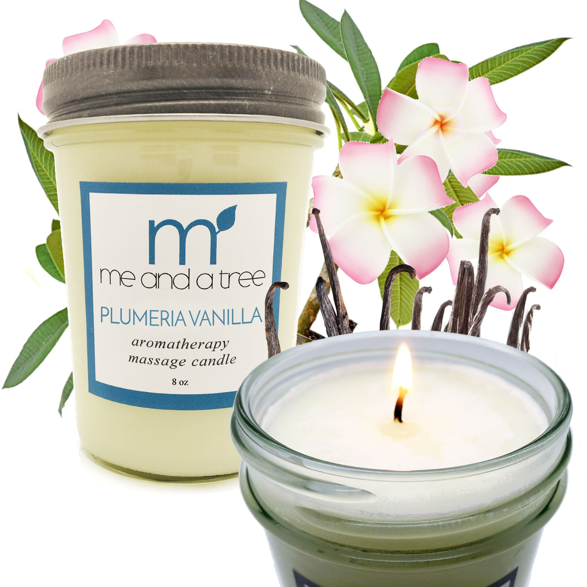 Best Natural Plumeria Vanilla Christmas Thanksgiving Holiday Soy Candle Gift Set