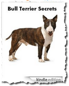 Bull Terrier Secrets: How to Raise Happy & Healthy Bull Terriers