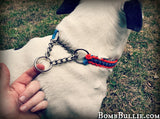 Paracord Martingale Dog Collar - Cobra Knot - BombBullie  - 2