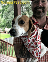 "Nannerfest 2019 ""Year of the Pig"" Themed Dog Bandana"