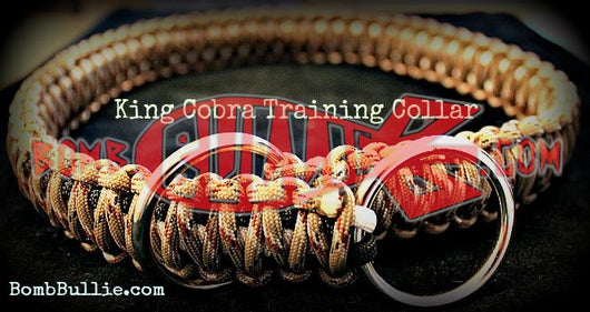 Paracord Training Dog Collar - King Cobra Knot | Paracord Dog Collars - BombBullie  - 1