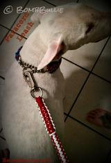 Paracord Dog Leash - BombBullie  - 4