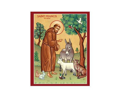 Saint Francis of Assisi Collection