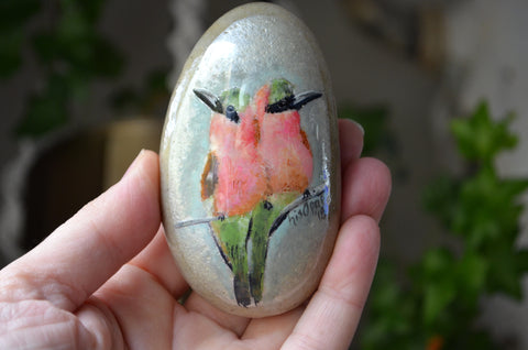 Southern Carmine Bee Eaters, Hand Painted Rock, Unique Gift, Bird Watcher Gift, Painted Stone Art