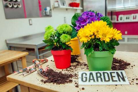 Chocolate Flower Pot Cake Recipe How To Cake It Yolanda Gampp