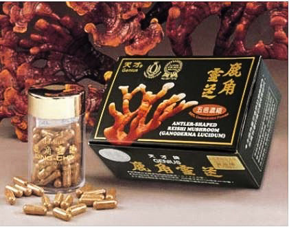 A-101 500% Concentration Antler Shaped Reishi 500% 鹿角靈芝 60 Caps
