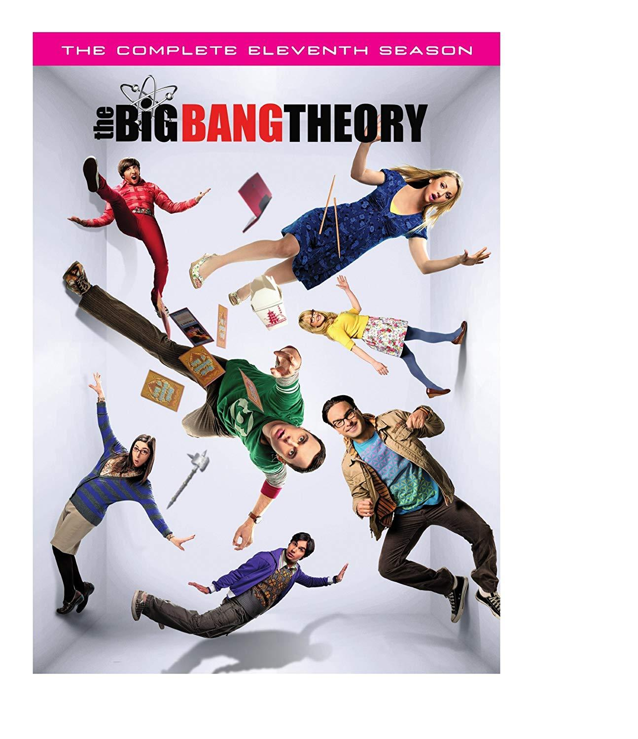 Big Bang Theory Season 11 (DVD)