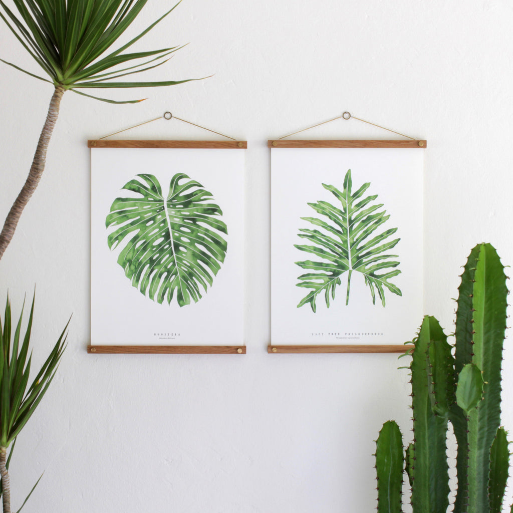 Monstera and Lacy Tree in Hanger Frames