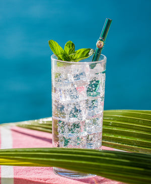 Glass Straws - Teal Turtle On Teal Straight Glass Straw