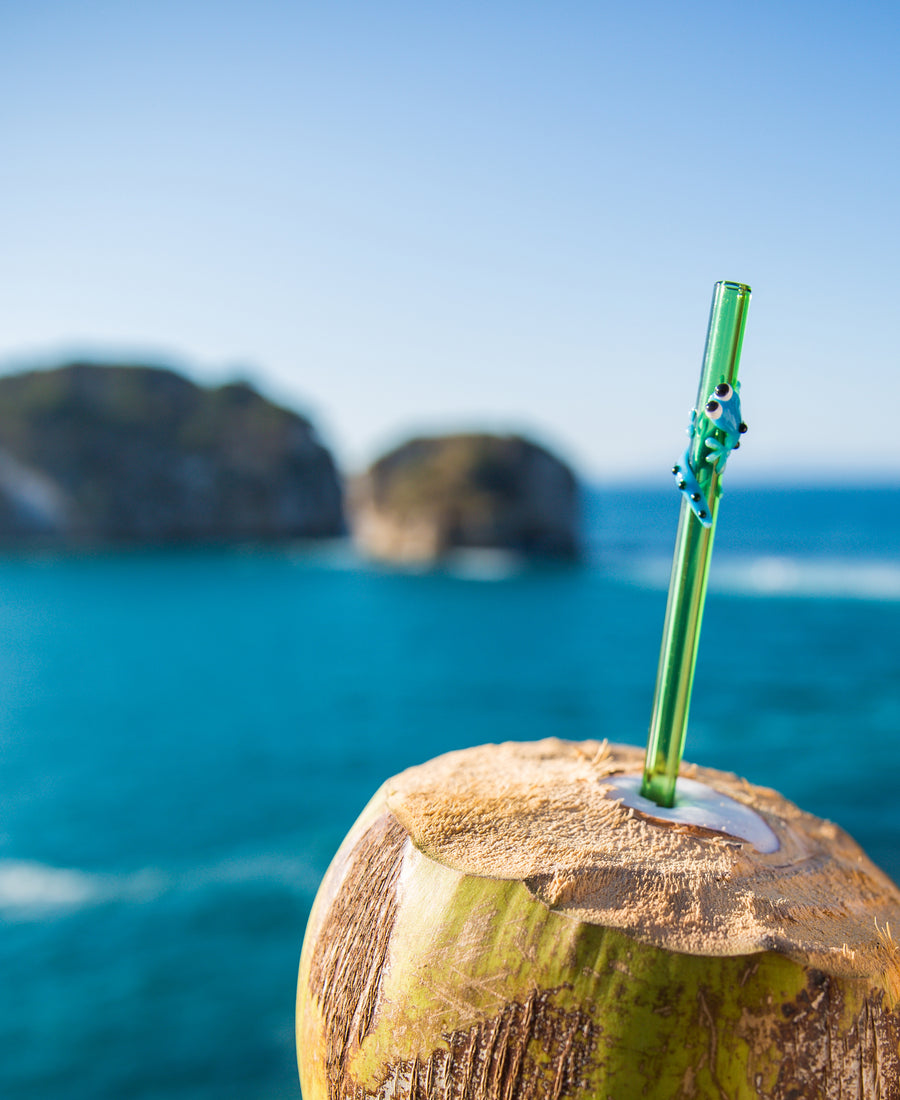 Glass Straw - Sky Blue Gecko On Green Straight Glass Straw